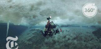 Under the Antarctic Sea