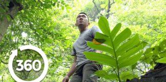 Hanoi's Paranormal Portal 360-degree video